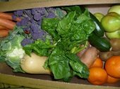 Organic Family Box - Mixed